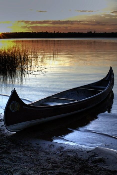 redwingjohnny:    A Canadian is someone who knows how to make love in a canoe.~ Pierre Berton