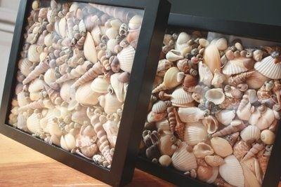 Another way to display seashells you've collected. Arrange inside of photo frames.  JESSICA LANG!!
