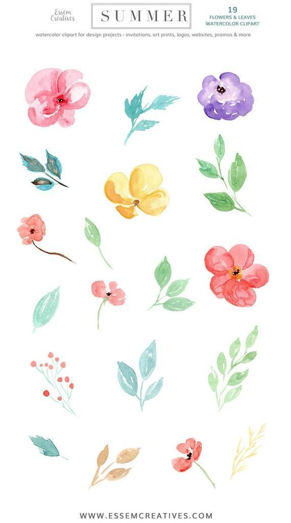 Tropical Watercolor Clipart Watercolour Flower Clip Art Summer