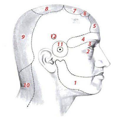 Ezeket a betegségeket jelezheti a krónikus fejfájás, a fej bizonyos pontjain!