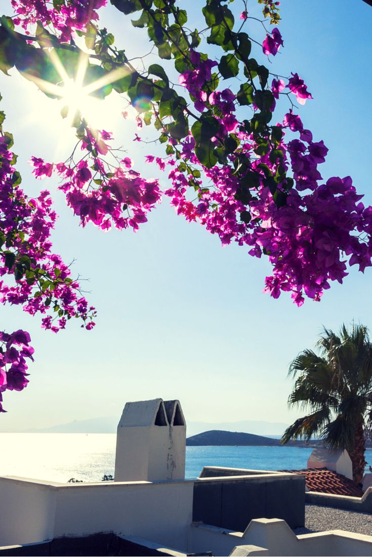 We're liking the look of Bodrum this afternoon