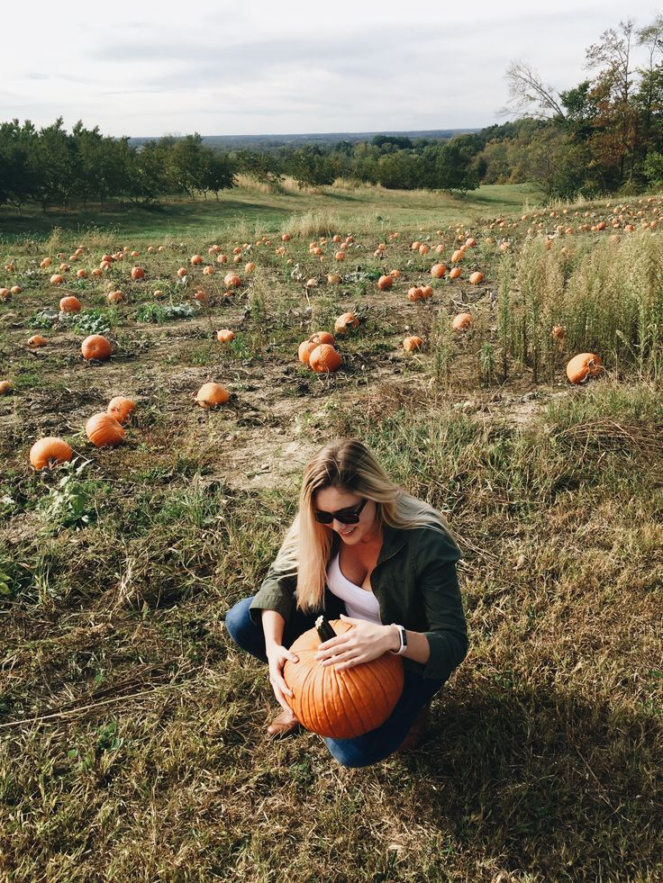 Pumpkin patch fall love