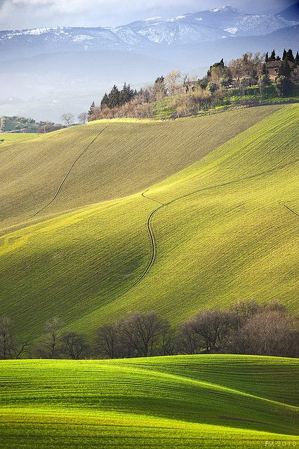 Marche Italia - Color pattern inspiration