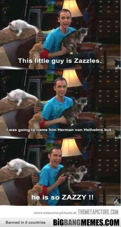 zazzles!!!! - The Big Bang Theory Memes