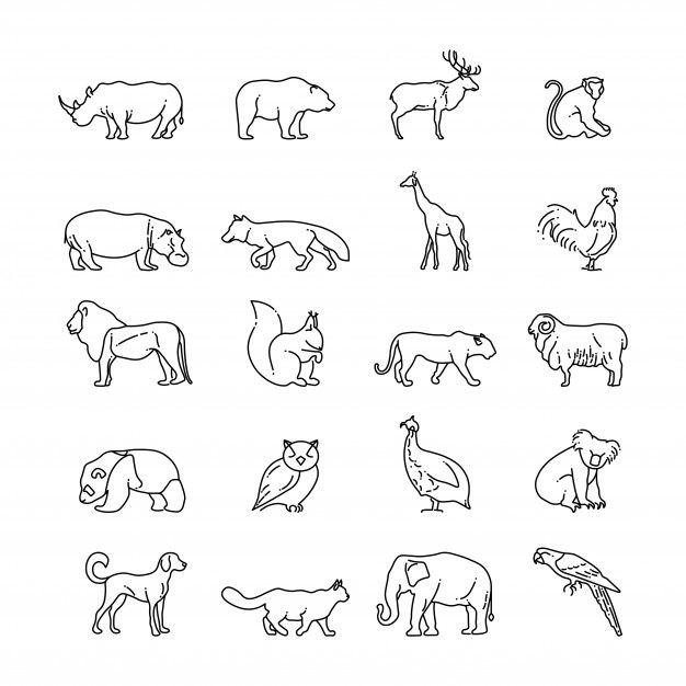 Tiere Dunne Linie Symbole Tiertattoos Nashorn Tattoo Hundesymbol