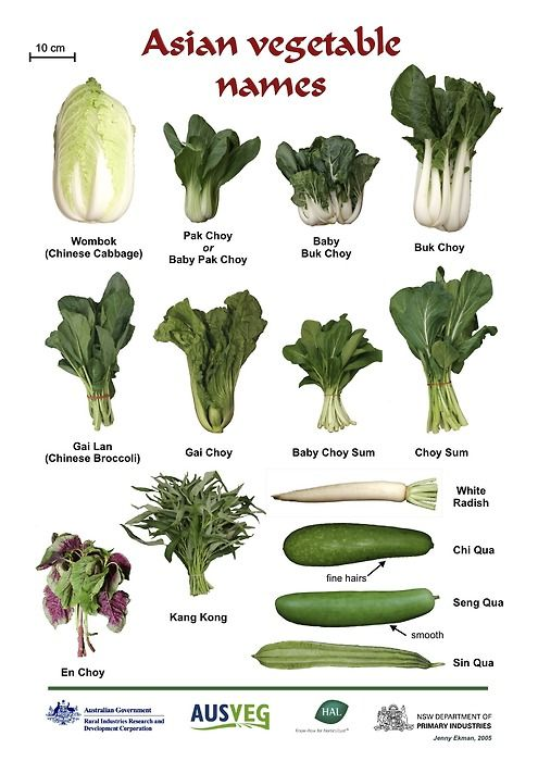Best 25+ Vegetables Names With Pictures ideas on Pinterest | List ...