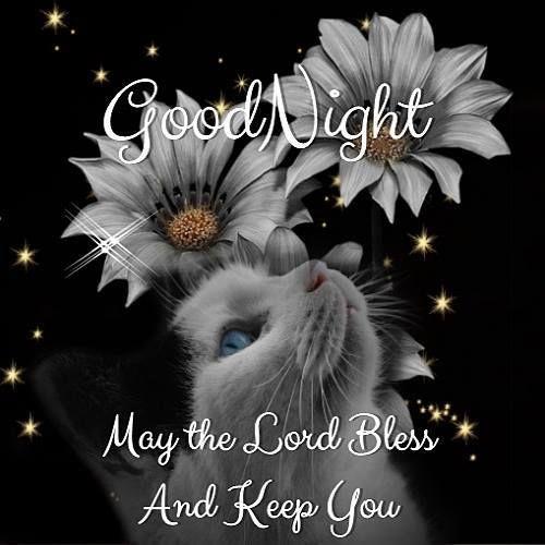 Good Morning Everyone Gee Lyric : Good night everyone god bless you inspirational