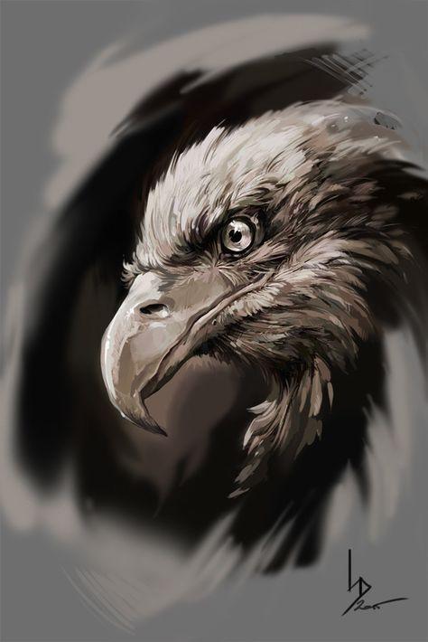Eagle, Dmitriy Iorgachov on ArtStation at https://www.artstation.com/artwork/EwbKA