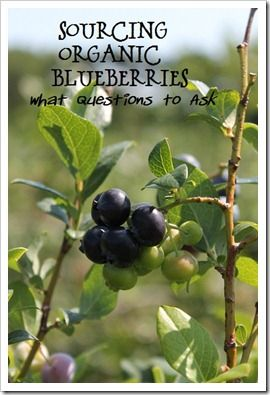 Want to pick blueberries in the greater Grand Rapids, Michigan area? This list will help you find organic or organically grown blueberry farms for your picking enjoyment.
