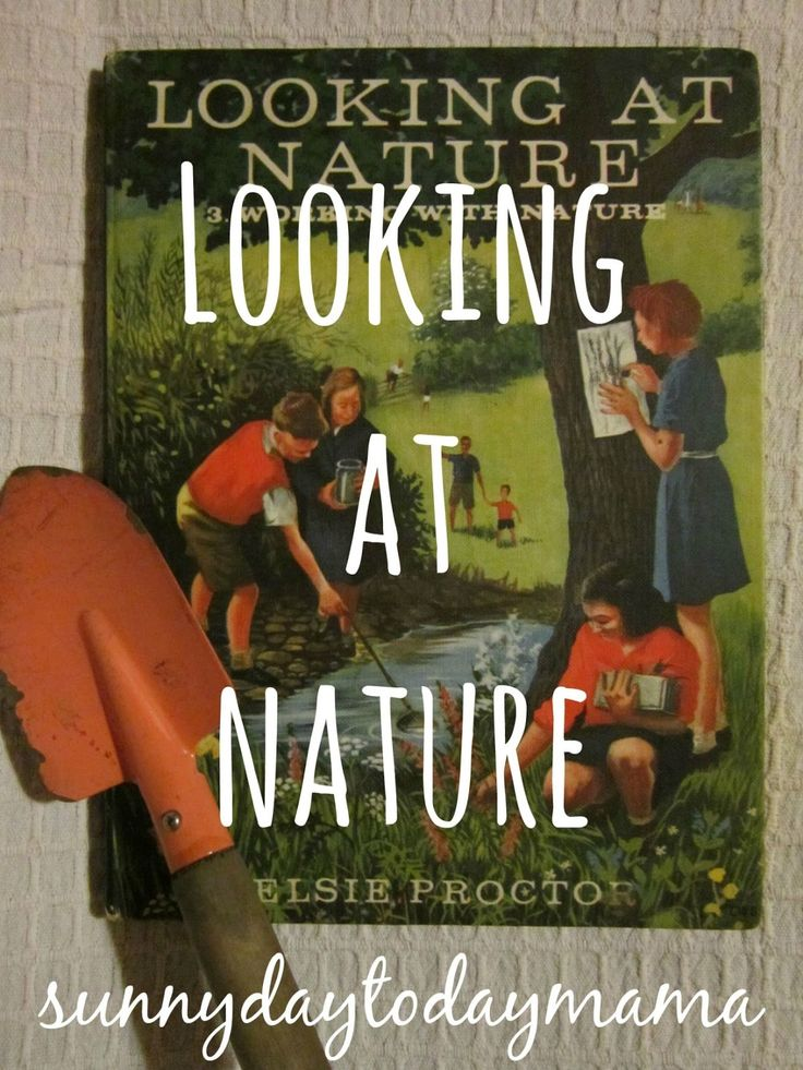 Looking At Nature: Book 3. Working With Nature by Elsie Proctor http://sunnydaytodaymama.blogspot.co.uk/2012/02/looking-at-nature.html