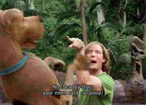 Your Mom Eats Cat Poop