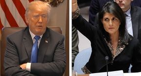 'Embarrassing spectacle of American diplomacy': Ex-ambassador to NATO slams Trump, Haley for 'bullying' UN