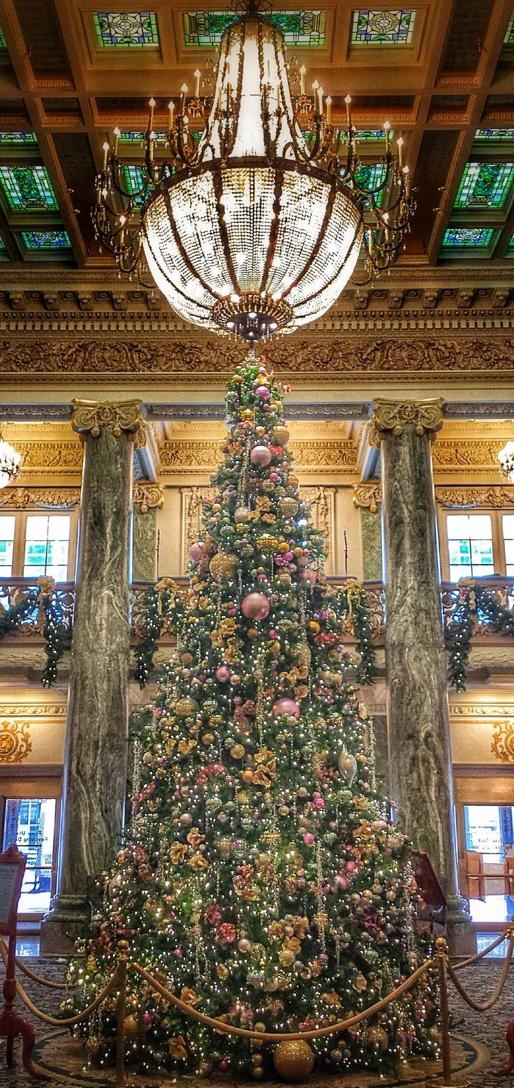 Lds temple ornaments - Christmas Tree In The Joseph Smith Memorial Building Photo By Tyler Smith