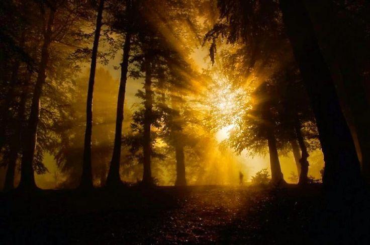 Abiadar Fernandes Poemas românticos: Luz eterna