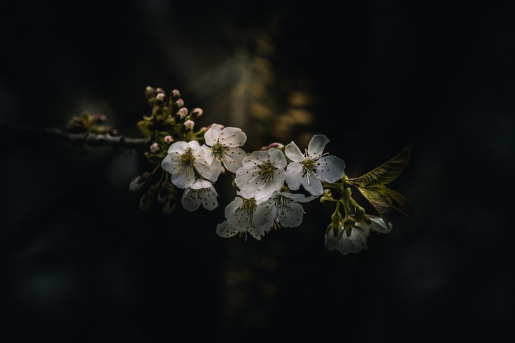 Photograph A New Day A New Life by Paul Barson on 500px