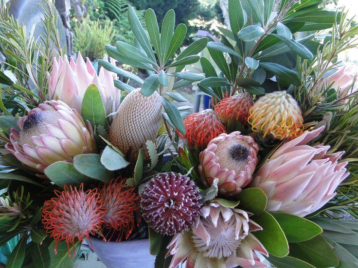 вам экзотические цветы фото с названиями для букетов пункт