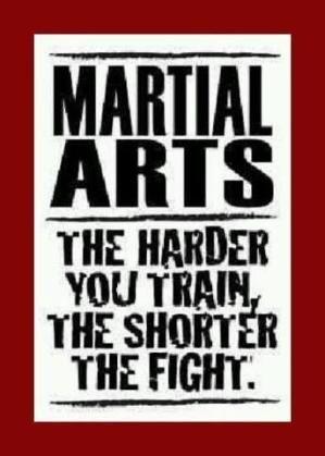 Martial Arts by velma