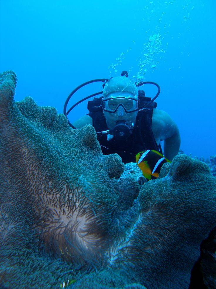 Last 20 years - mainly underwater. Here in Saipan.