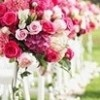 Pink Wedding Concept / Pembe Düğün Konsepti