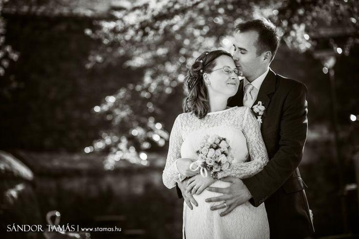 Sándor Tamás fotói - Esküvői fotózás, jegyesfotózás