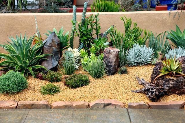 Succulent Landscape Design Ideas, Southwest Garden Plants