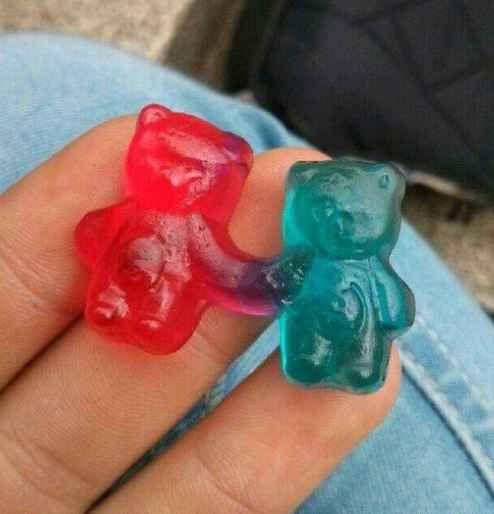 Dégustez ces oursons en gélatine adorablement reliés.
