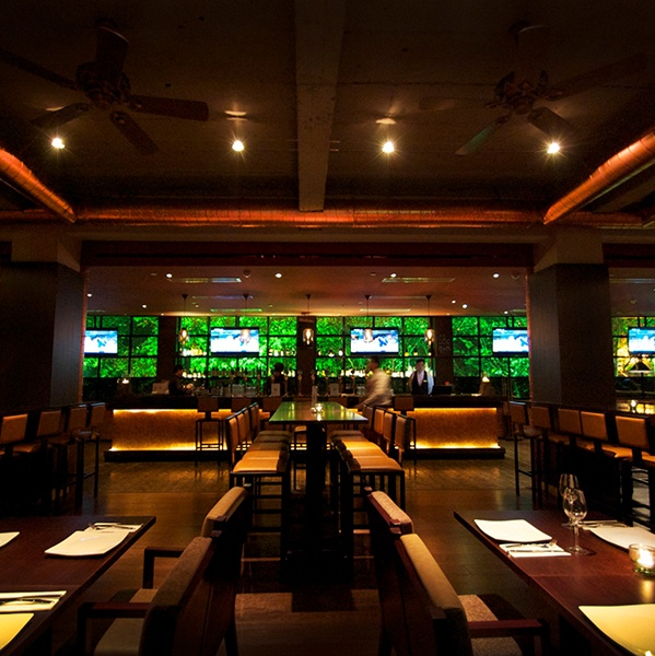 Best bar brewery by red design consultants images on
