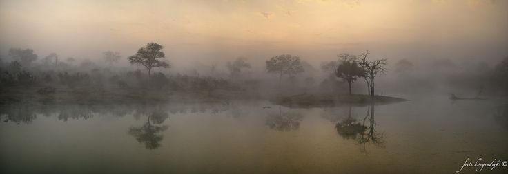 It was an early and cold morning in Sabie Sands Game Reserve. I used eight images to create this panorama.