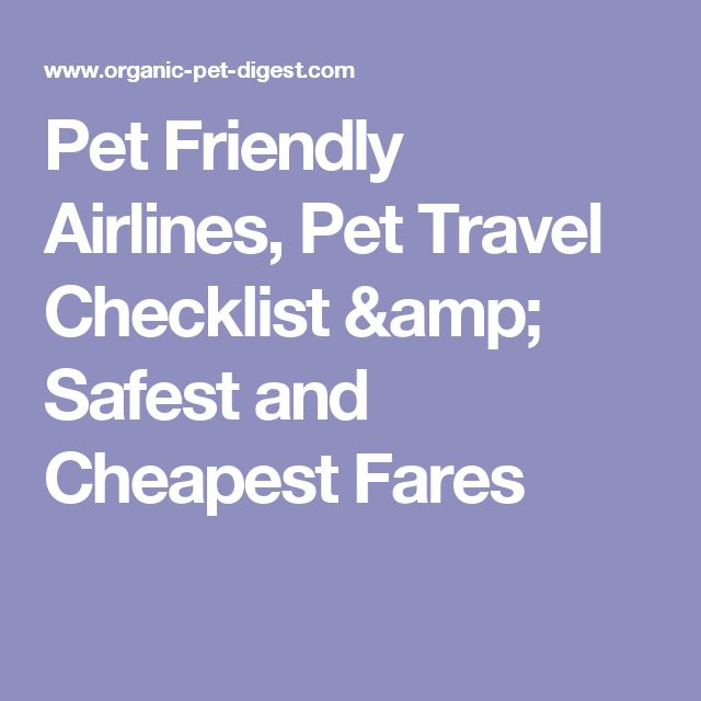 Pet Friendly Airlines, Pet Travel Checklist & Safest and Cheapest Fares