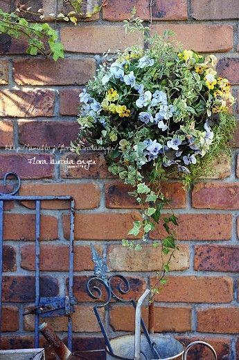 水色のビオラを使って。。。スリット壁掛けな寄せ植え の画像|フローラのガーデニング・園芸作業日記