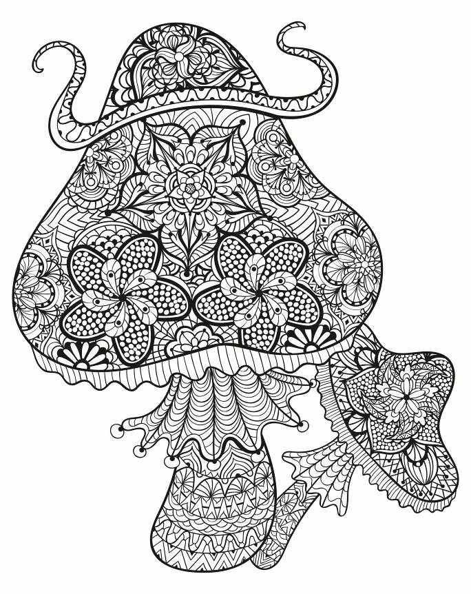 202 best Adult ColouringMushrooms Toadstools Zentangles