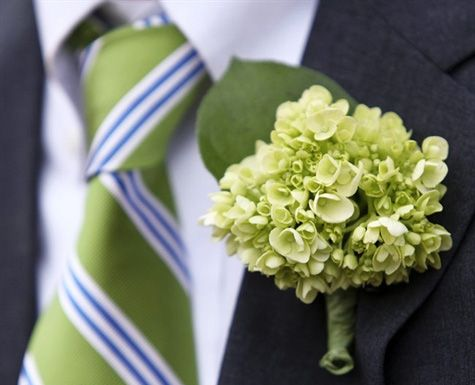 hydrangea boutonniere... gorgeous? yes!  Practical? sadly, no  Yet another example of wedding design photos not based on reality. Hydrangeas simply don't hold up well in boutonnieres or corsages. So, unless you don't care if your flowers droop an hour or so after they're created, choose silk hydrangeas or another flower entirely ;]