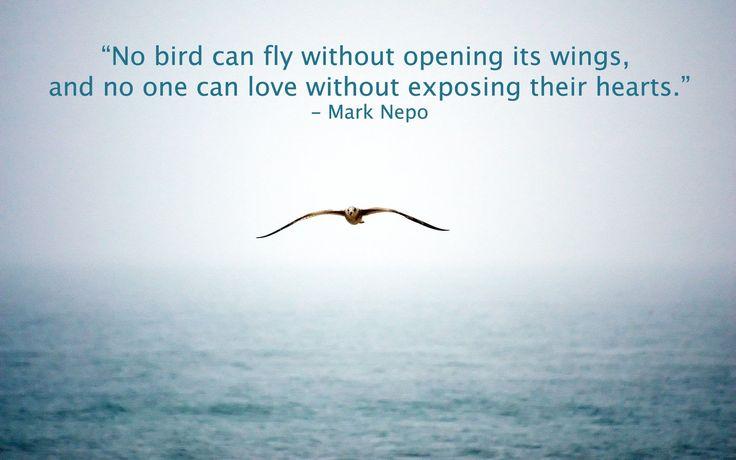 Abrir las alas