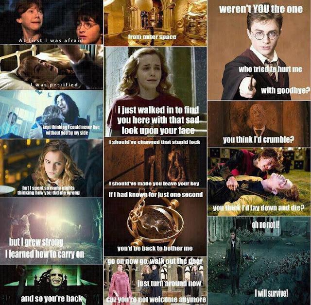 Harry Pothead series?