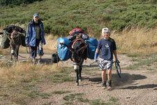 EselWandern | Reiseinformationen | EselWandern - Wandern mit dem Esel