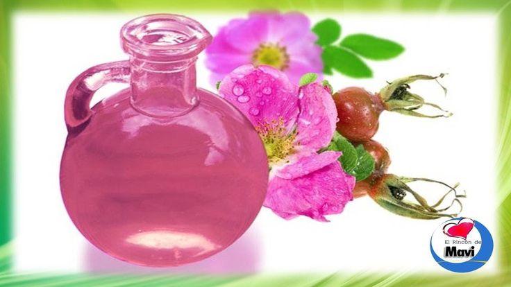 Como hacer aceite de rosa mosqueta casero - Usos y propiedades