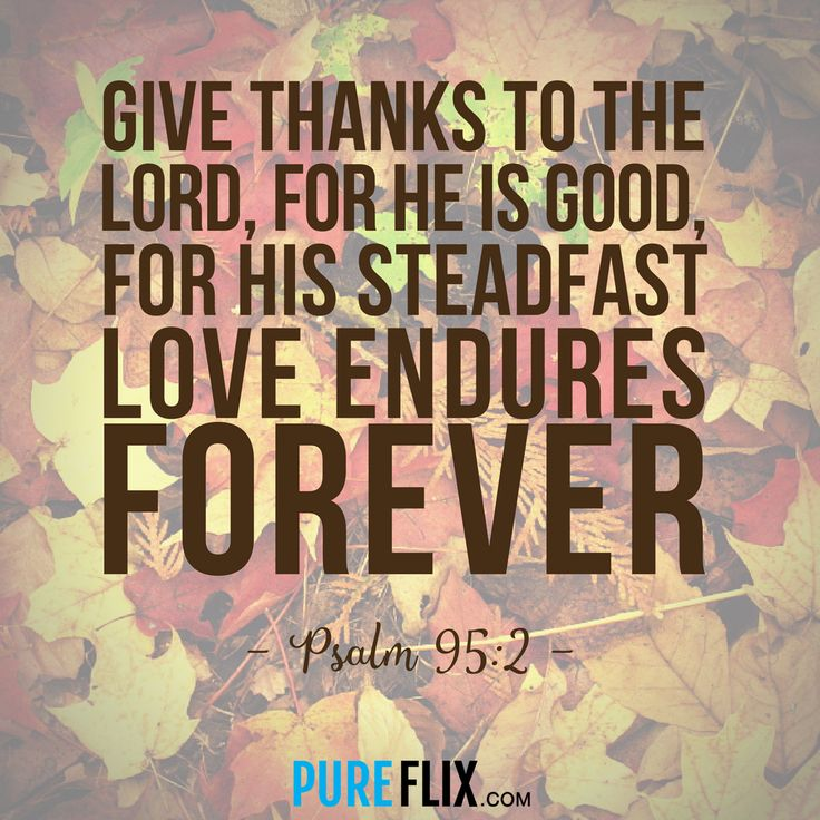 Happy #Thanksgiving from all of us at #PureFlix! May God bless you and your families this day. #HappyThanksgiving    Amen, in Jesus name I accept my blessings of desires in abundance of immeasurable proportion, I accept salvation by confes sing with my mouth that you my Lord Jesus, King of kings are my Lord and Savior, my God, because of you father everything I speak comes to fruition commanded by the Holy Ghost, through the everlasting love of Jesus Christ, embraced in Gods mercy and grace…