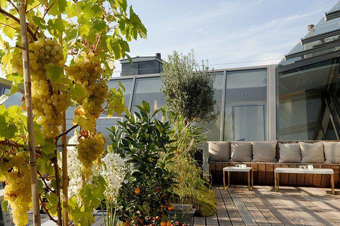 Terrasse 39V Restaurant Paris avenue Georges V - une des meilleurs table parisienne menu truffe d'alba  !!