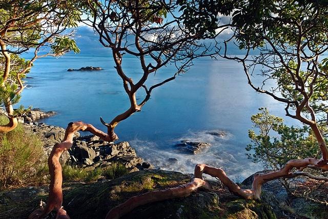 East Sooke Park coastal trail, Vancouver Island  Beautiful area, been here & it's so amazing :)