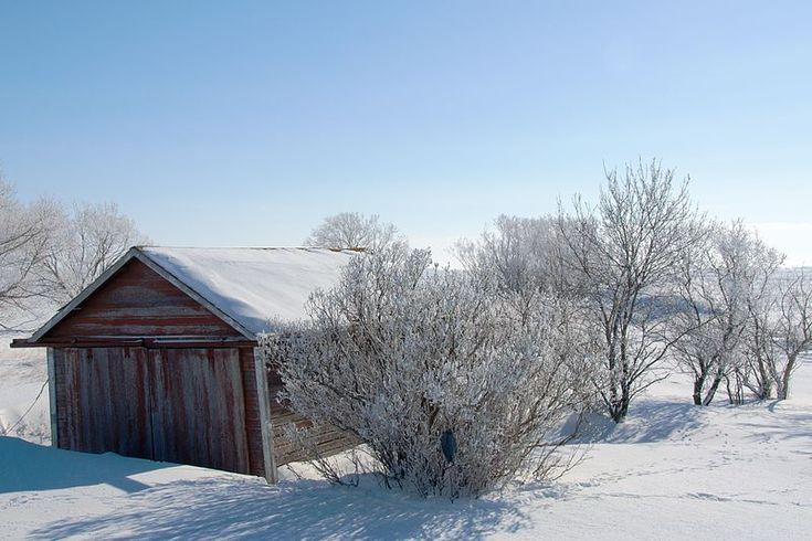 Où trouve-t-on la neige la plus blanche en Amérique du Nord? Au Canada, révèle une étude menée par des chercheurs de l'Université de Washington.