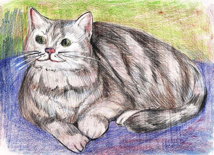 Как рисовать кота цветными карандашами. Поэтапное рисование.