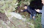 Pilot pesawat tempur Suriah yang jatuh dirawat di rumah sakit Turki  ANKARA (Arrahmah.com)  Seorang pilot militer Suriah yang pesawatnya jatuh di Turki dekat perbatasan Suriah sekarang berada di rumah sakit. Pillot tersebut telah ditemukan setelah dilakukan pencarian selama sembilan jam kantor berita Anadolu melaporkan Ahad (6/3/2017).  Menurut laporan warga Turki pilot itu ditemukan selama pencarian melalui udara dan darat dan kemudian dibawa ke rumah sakit setempat setelah pesawat itu…