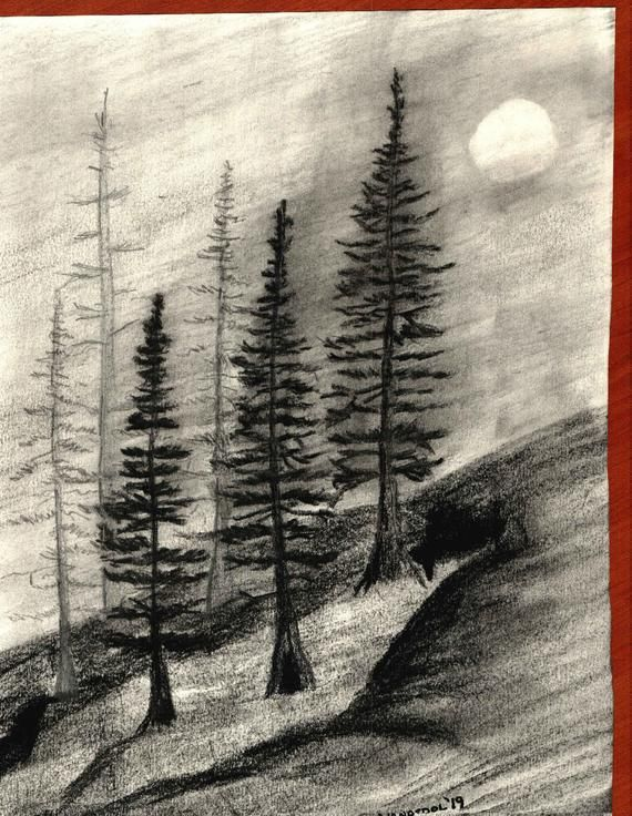 Foggy Mountain Pines Trail Graphite Pencil Charcoal Sketch ...