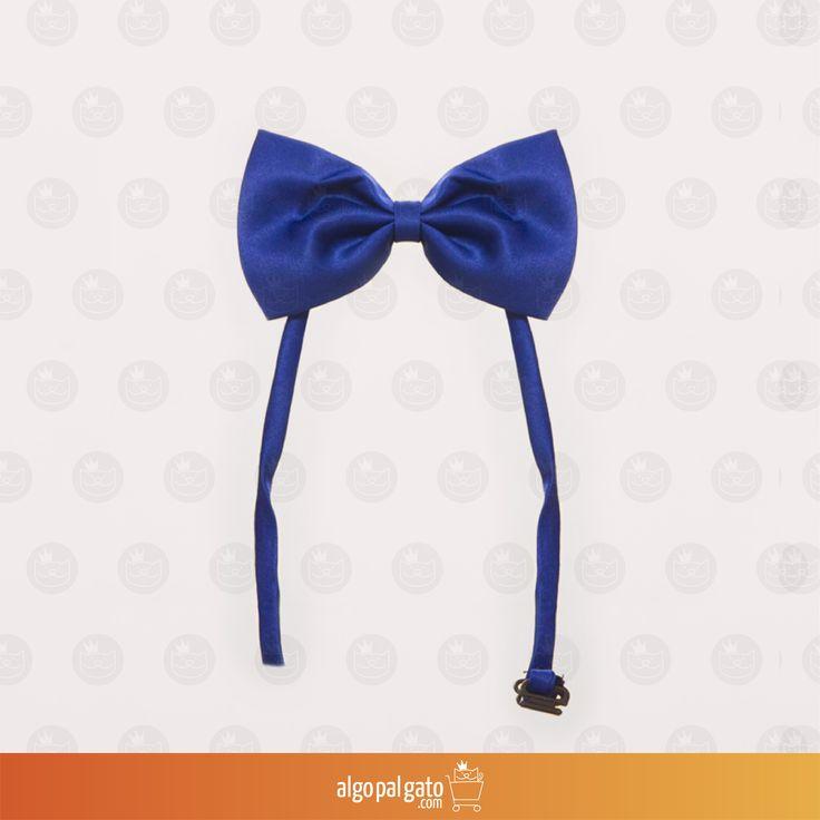Corbatín gato azul Talla: Única Material: Tela  Color: Azul