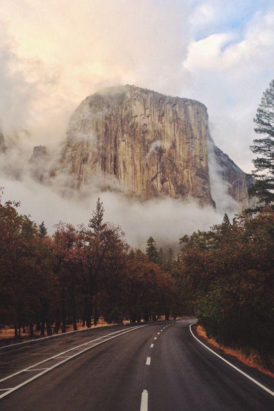 Yosemite National Park, California, USA by Zach Bresnick.