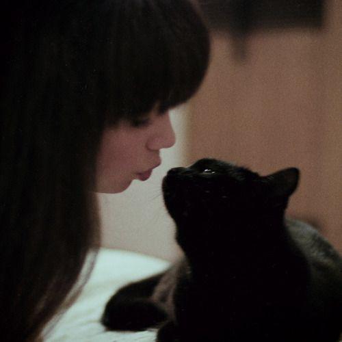 「cat」おしゃれまとめの人気アイデア Pinterest  unfinish   Pinterest   キスシーンの名場面集、子猫、猫