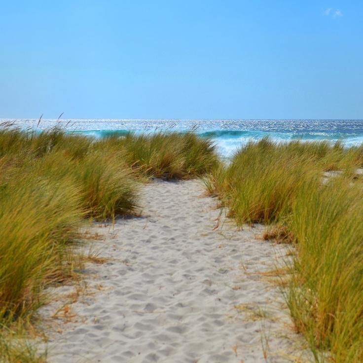 Swim Cart Beach, Tasmani