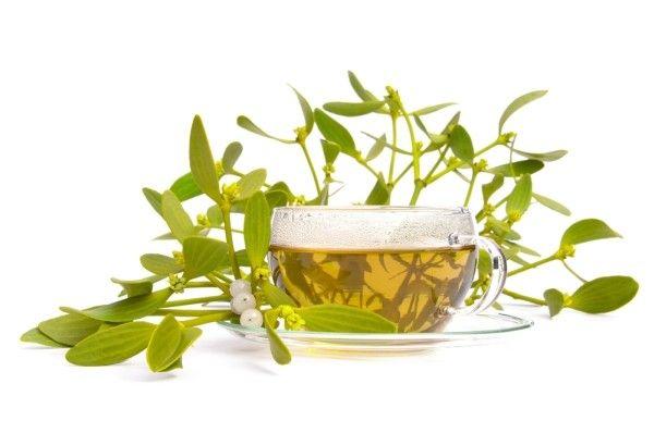 A fagyöngy teája tisztítja az ereket, nyugtatja a szívet