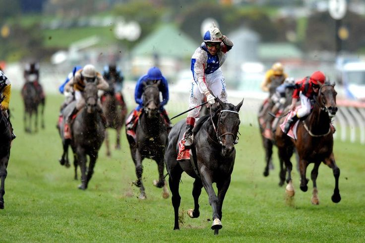 Taking part in horse racing bets for free with no deposit is now possible with the help of betting websites.