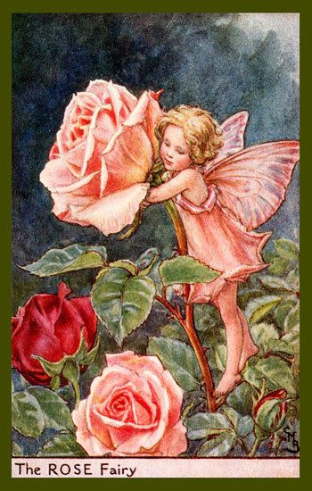 Olde America Antiques | Quilt Blocks | National Parks | Bozeman Montana : Cicely Barker Fairies - The Rose Fairy